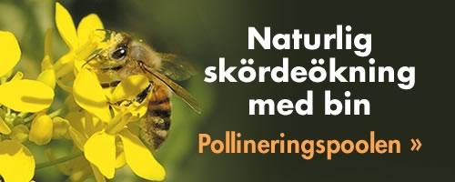Pollineringspoolen