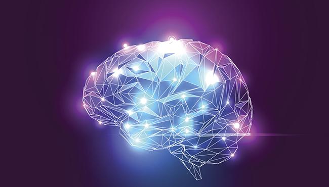 Hjärnans förmågor