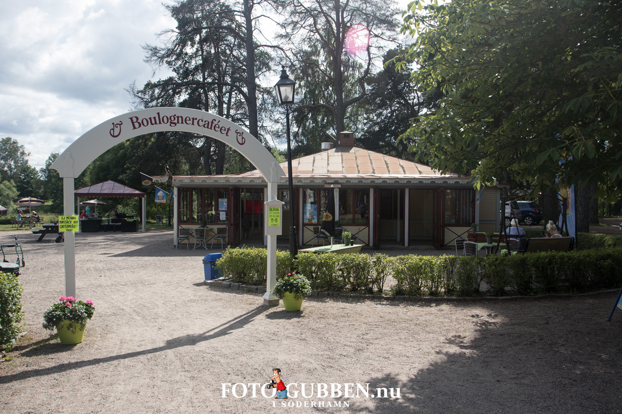 Boloungerskogen Gävle - 2016