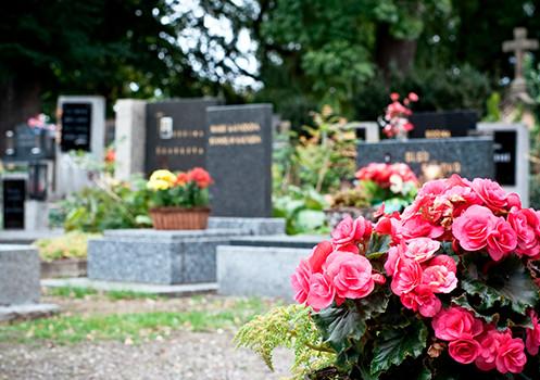 Kontakta oss för råd och val av gravsten - Hambergs Stenhuggeri