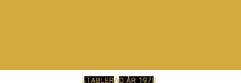 Salong Infinity