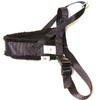 Spårsele alac svart med fodrat bröstband - Visa mer information om den här produkten
