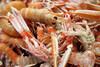 Havskräftor - Visa mer information om den här produkten